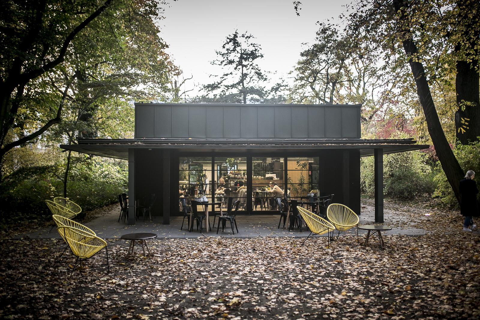 фото предоставляет одноэтажное здание в парке в окружении опавшей листвы. Перед павильоном стоят шезлонги.
