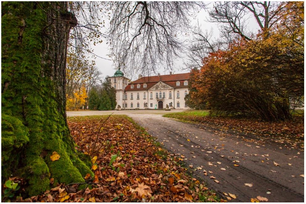 Nieborów, pałac, widok od str. północnej, fot. P. Sekuła, 2017