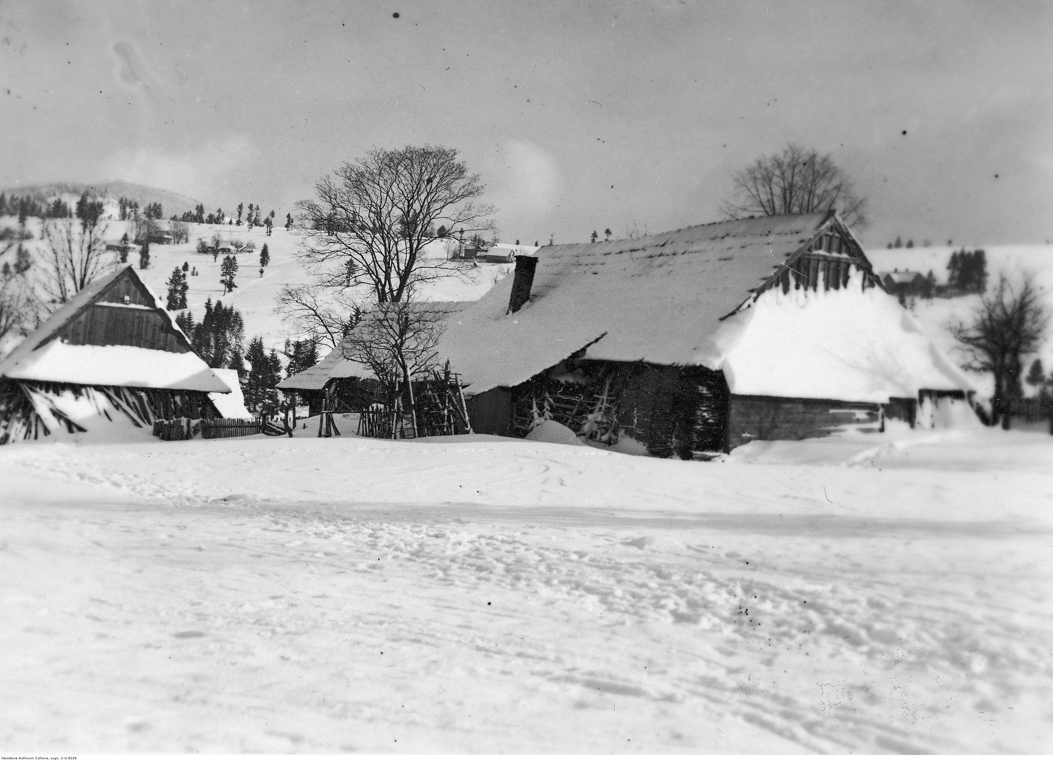 Panorama Zwardonia. Widok ogólny drewnianych zabudowań wiejskich. Widoczny krajobraz zimowy. Źródło: NAC.