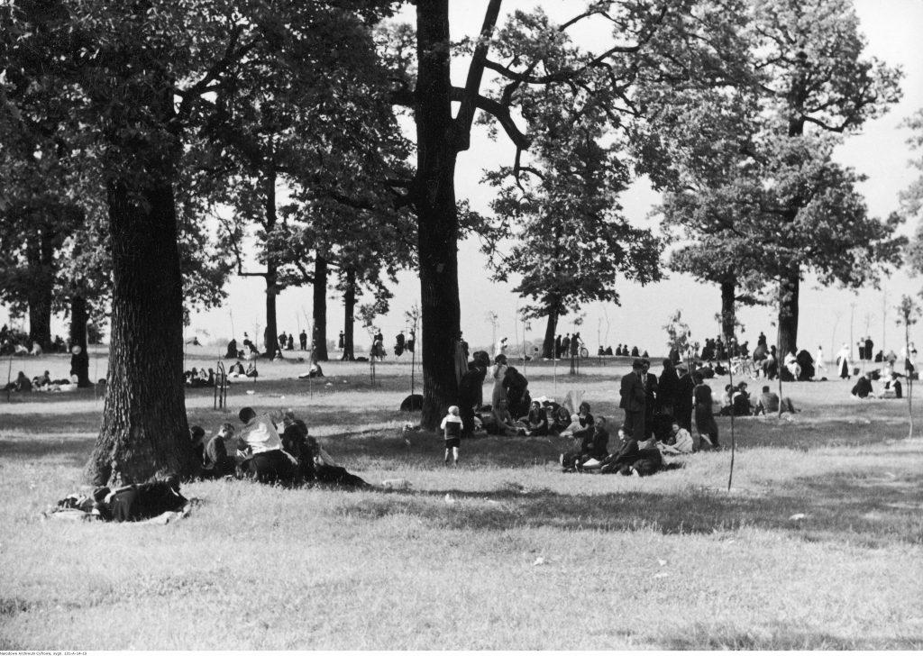 na trawie, wśród drzew, porozkładane kocyki, na nich przesiadują grupki ludzi