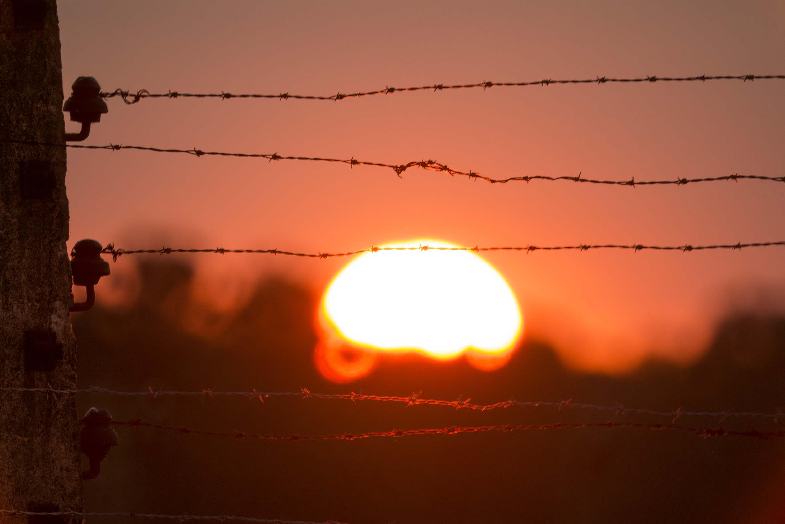 zdjęcie zachodzącego słońca, na pierwszym planie drut kolczasty