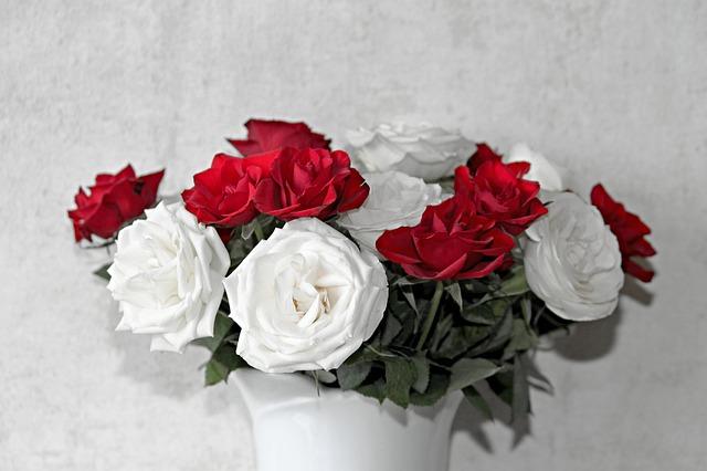 bukiet biało-czerwonych kwiatów