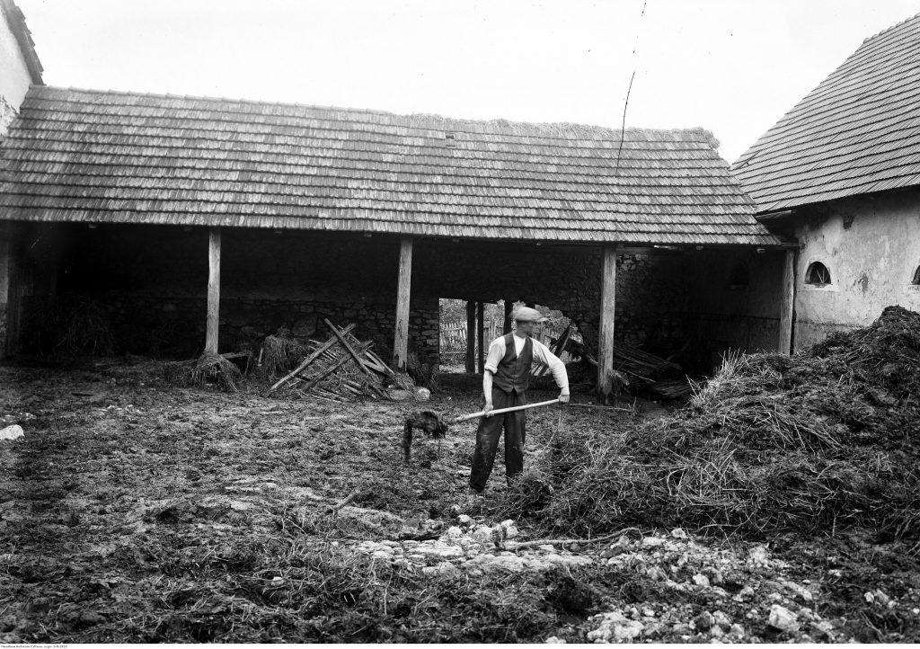 Prace w gospodarstwie we wsi Bolechowice (1933), fot. Narodowe Archiwum Cyfrowe