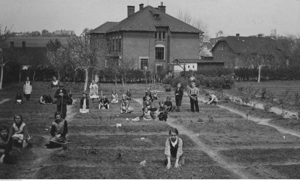 Uczniowie pracujący w ogrodzie szkolnym. Na dalszym planie widoczny budynek szkoły powszechnej nr 5 w Białej-Lipniku koło Krakowa, 1936, fot. NAC
