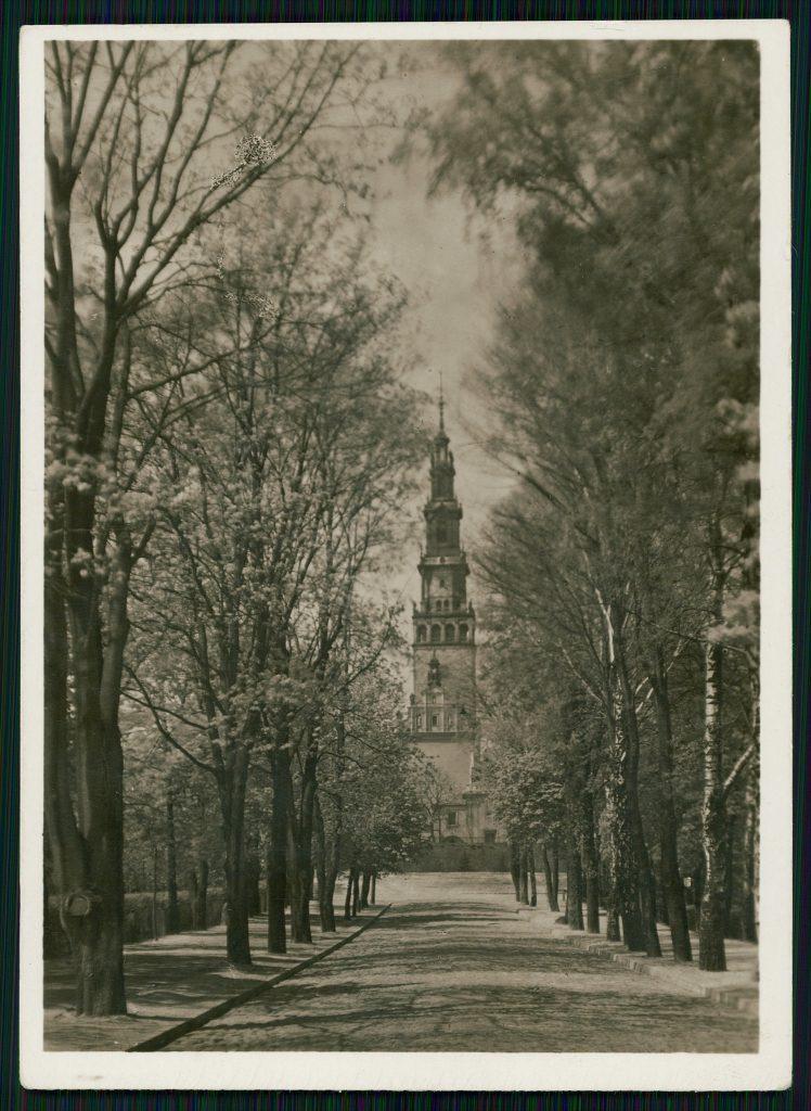 aleja kwitnących drzew zakończona wieżą jasnogórskiego klasztoru