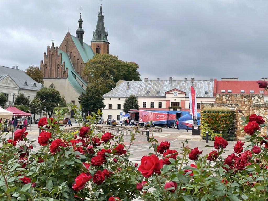 Wirtualny Teatr rozstawiony na rynku w Olkuszu, po lewej katedra, na pierwszym planie róże